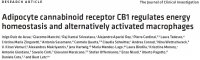 """Adipocyte cannabinoid receptor CB1 regulates energy homeostasis and alternatively activated macrophages"""