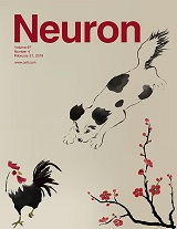"""Prefrontal-Periaqueductal Gray-Projecting Neurons Mediate Context Fear Discrimination"""