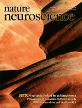 A publication in Nature Neuroscience by Cyril Herry's team