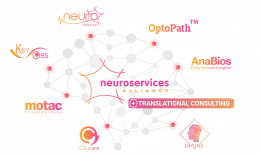 OPTOPATH BECOMES MEMBER OF NEUROSERVICE ALLIANCE